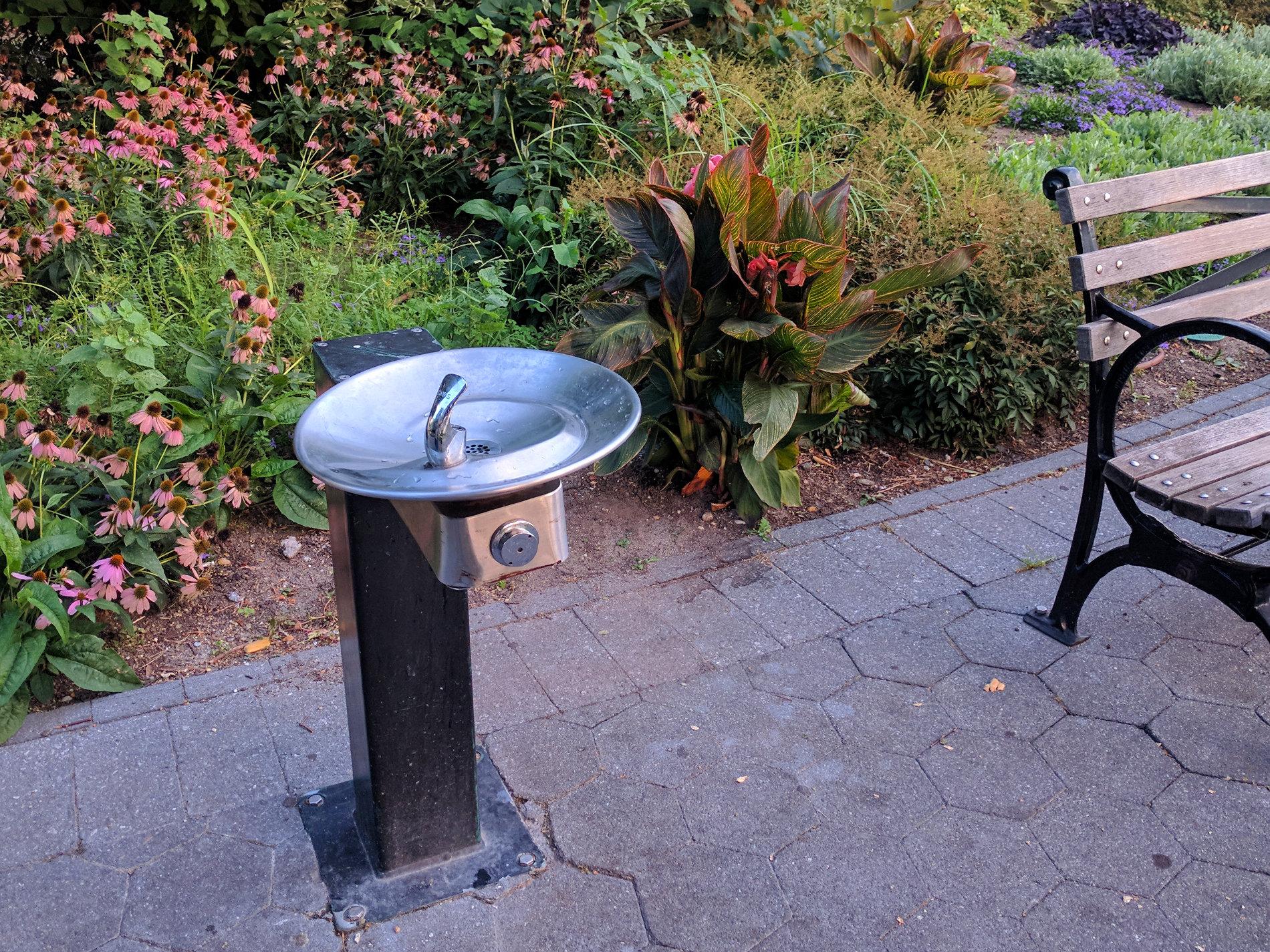 Water-Fountain neben einer Bank